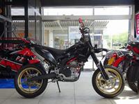 WR250X
