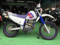 TT250Rレイド