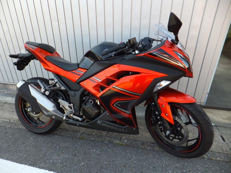 Ninja 250 SE